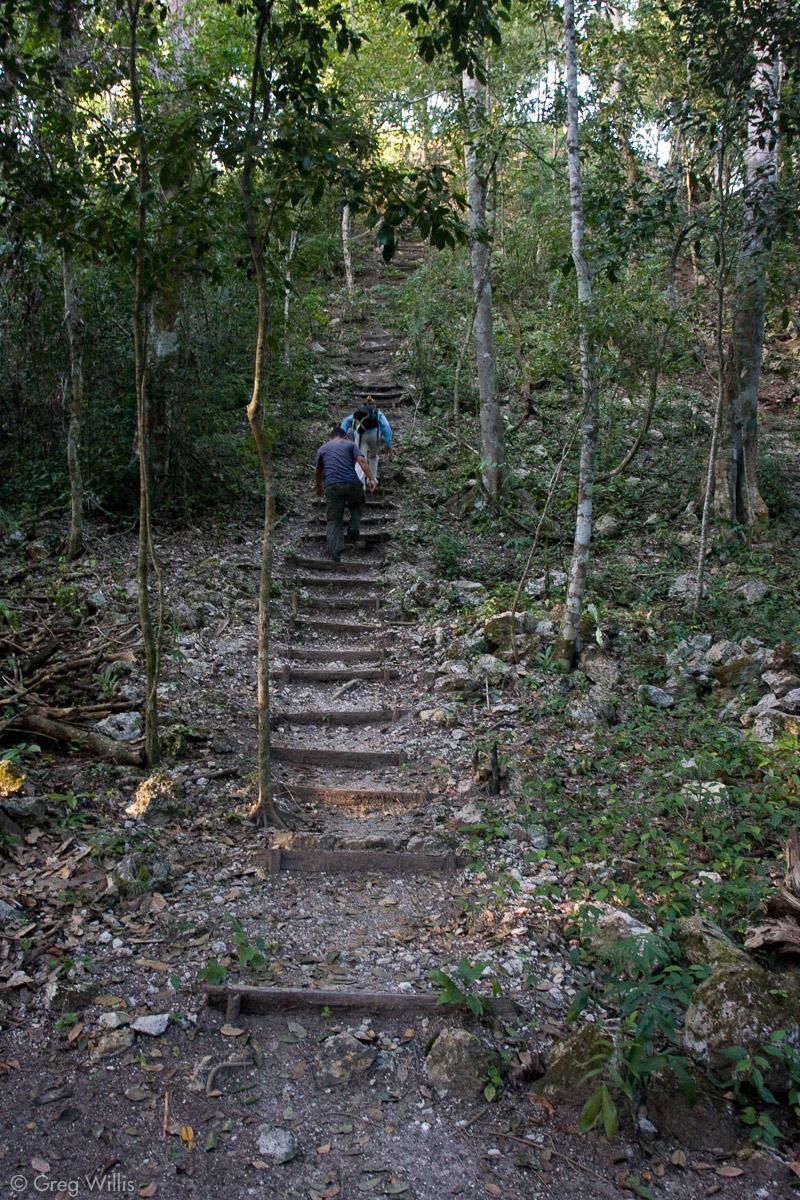 Escaleras hacia la pirámide norte en El Tintal